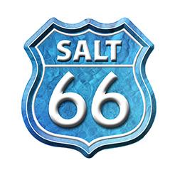 Salt 66